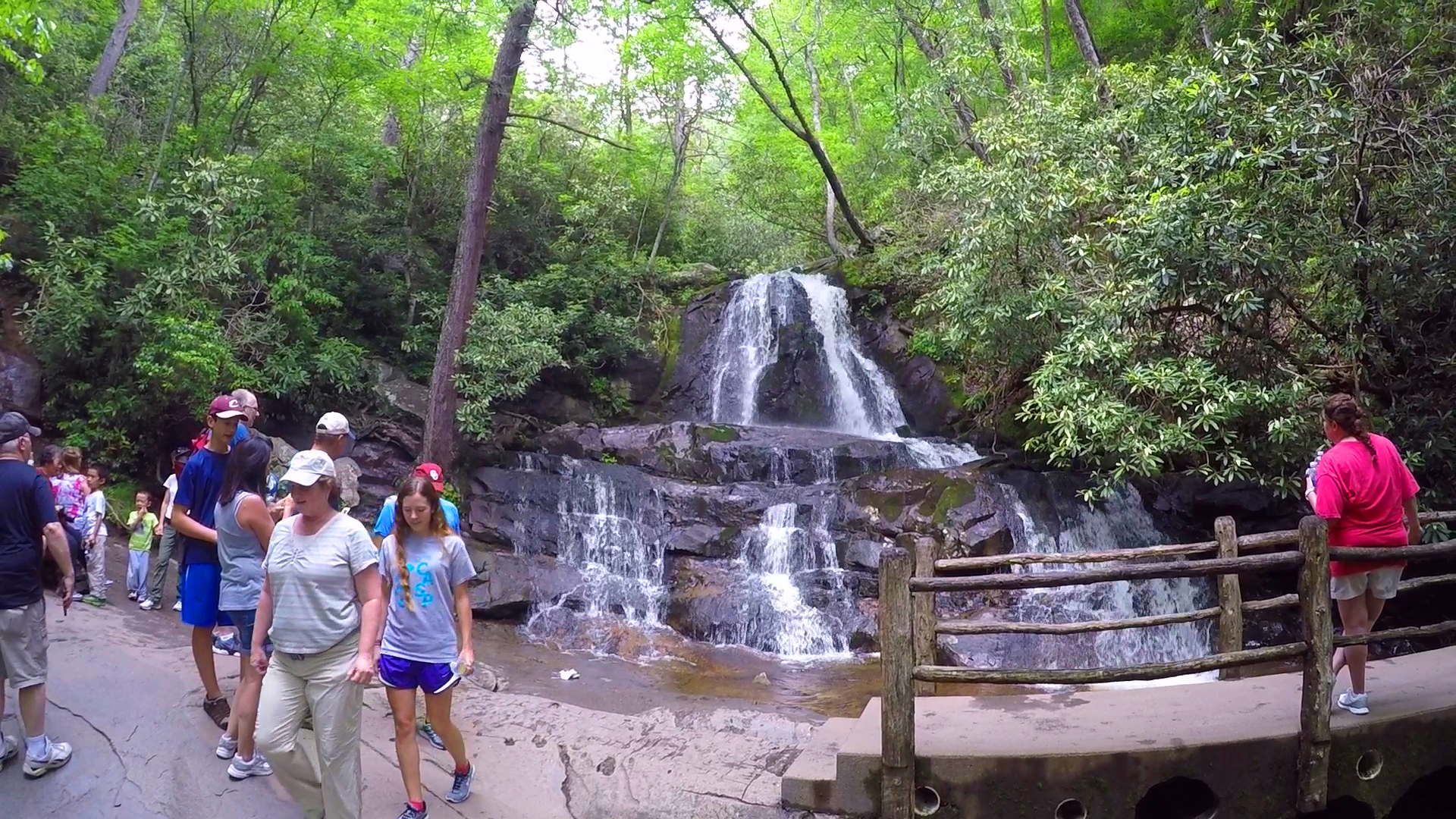 With more than 375,000 visitors in 2020 alone, the laurel falls trail is one of the most popular hikes in the smokies. 5 Smoky Mountain Trails That Are Perfect For Family Hikesthe Official Pigeon Forge Chamber Of Commerce