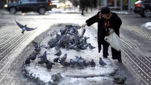 women feeding pigeons