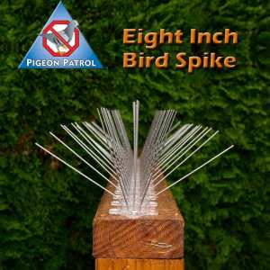 ultra-flex bird spikes