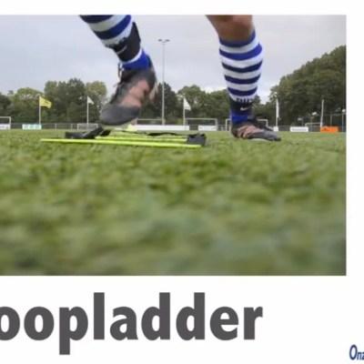 Loopladder