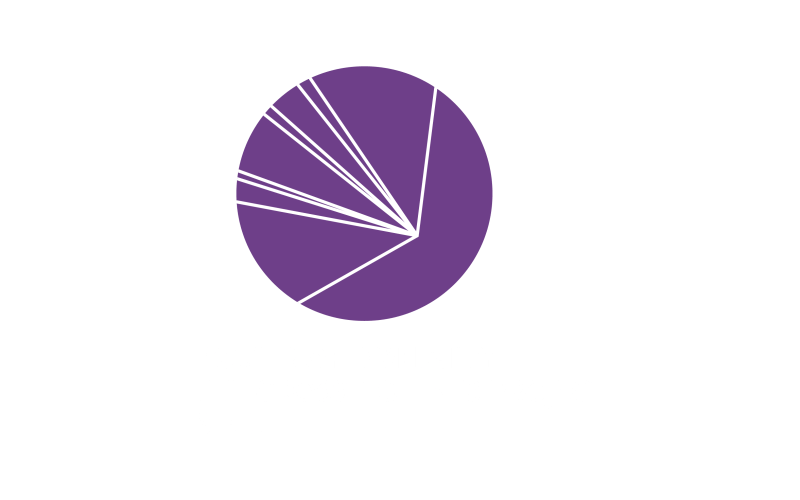 Logo_The Crossing Lines Project_Sibiu_rgb_white-01