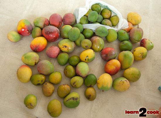 Many Mangoes