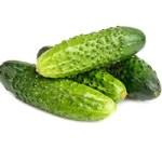 cucumber picture