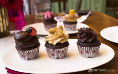 Mrs Magpie Kolkata has a new cousin in town – The Bistro