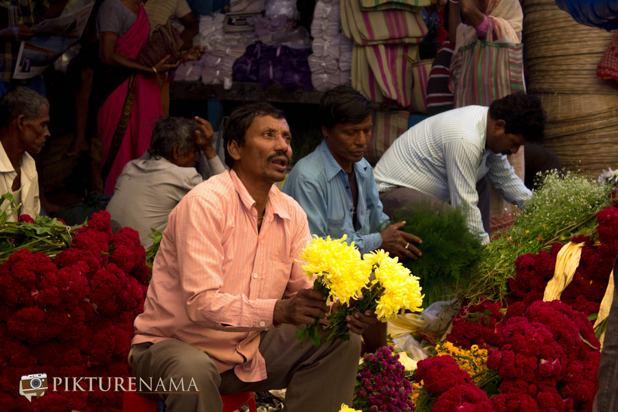Mullick Ghat Flower market Kolkata – A photowalk and some tips
