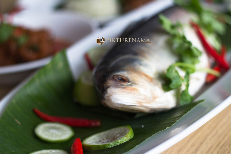 Ilish and its innovations