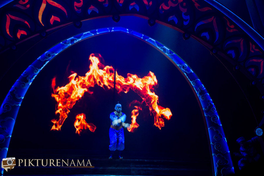 Mickey and the wondrous book fire show