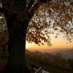 Sonnenuntergang bei Drei-Weihern