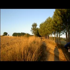 jakobsweg2005