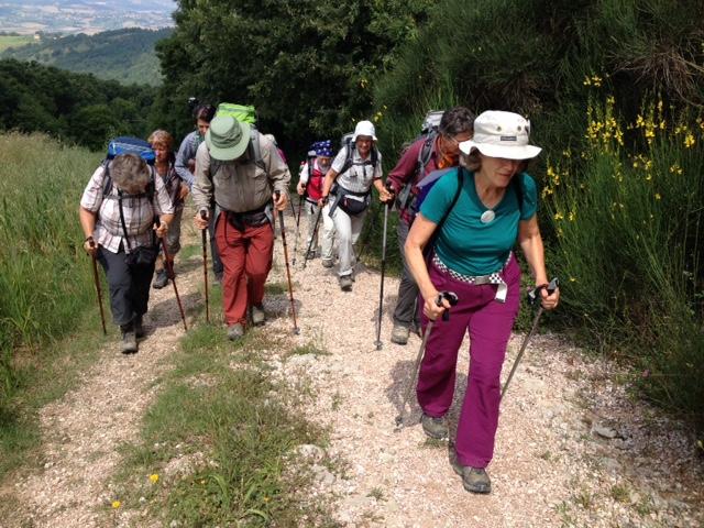 habemus feminas - Pilgerreise nach Rom
