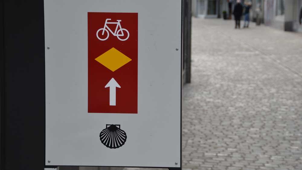Swiss Camino