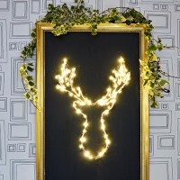 Brilliant DIY LED Deer Christmas Decoration
