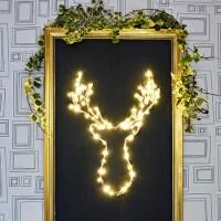 Brilliant DIY LED Deer Christmas Decoration