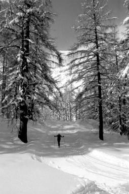 Skieur1