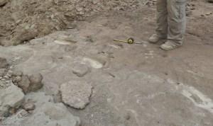 Die Spuren des Homo erectus vor kurzem entdeckt, in Eritrea