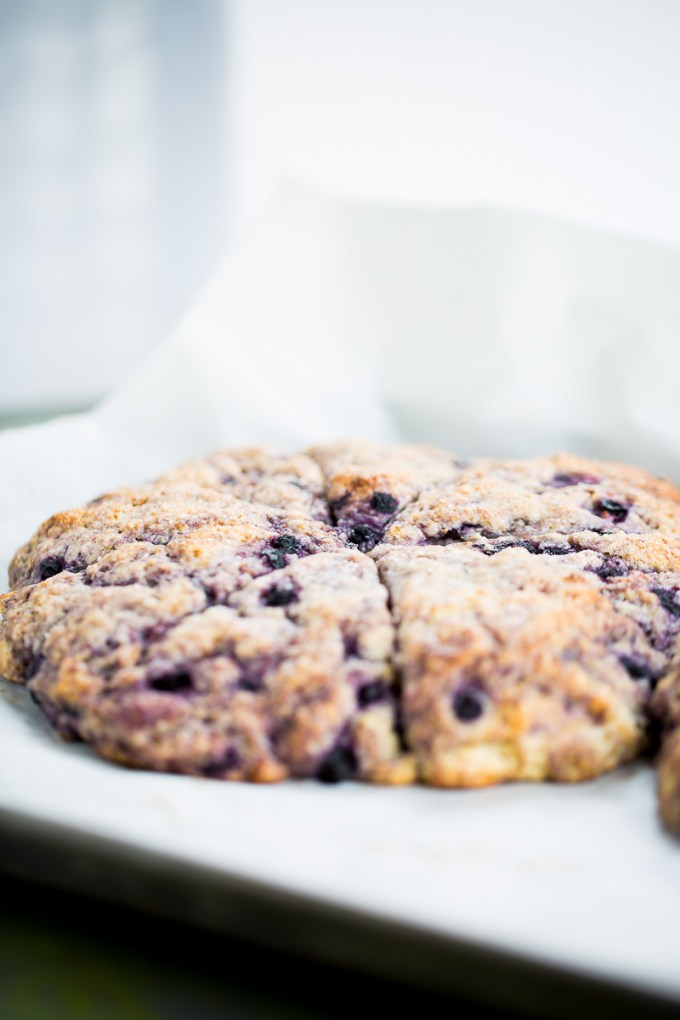 Scones de blueberries veganos
