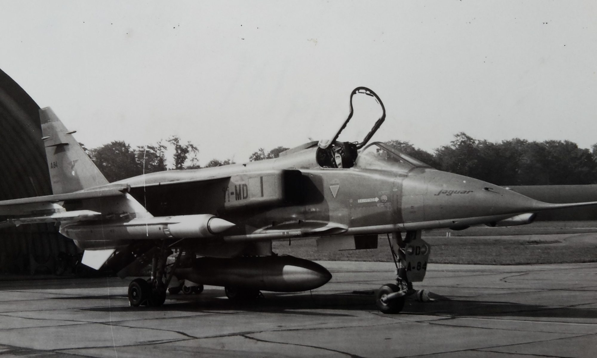 Jaguar en configuration 6F64