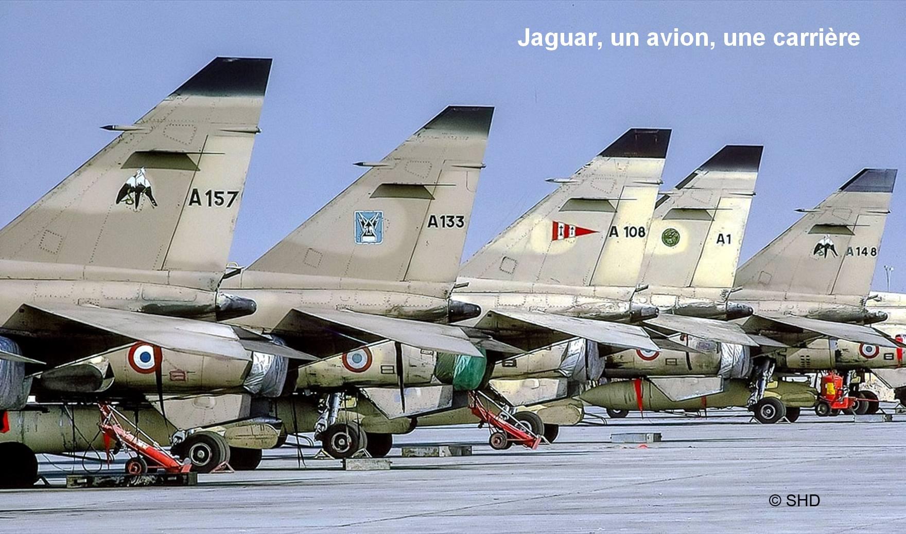 Face Book Jaguar, un avion, une carrière