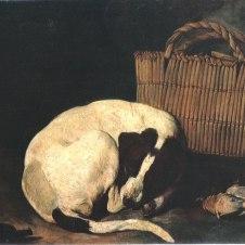 Arcangelo Resani (Roma, 1670 - Ravenna, 1740), Cane e sporta