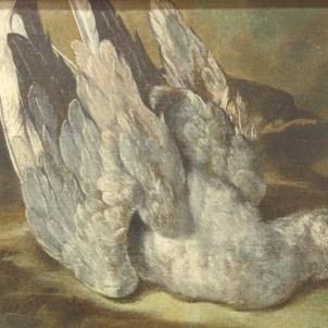 Arcangelo Resani (Roma, 1670 - Ravenna, 1740), Piccione morto