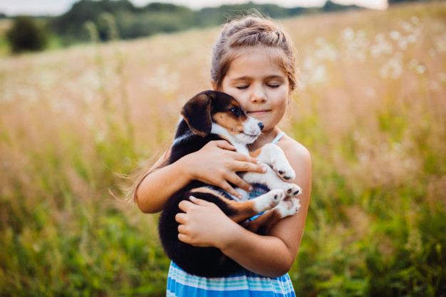 When is the Right Time to Consider Getting a Pet for Your Kids?