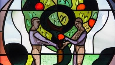 Photo of Проблеми розуміння  історії Дерева Пізнання (3:1-24)