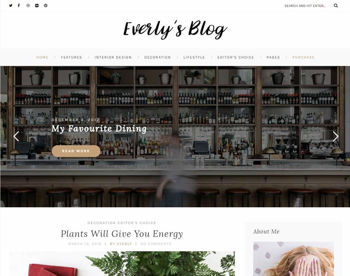 Everly Lite - free WordPress theme