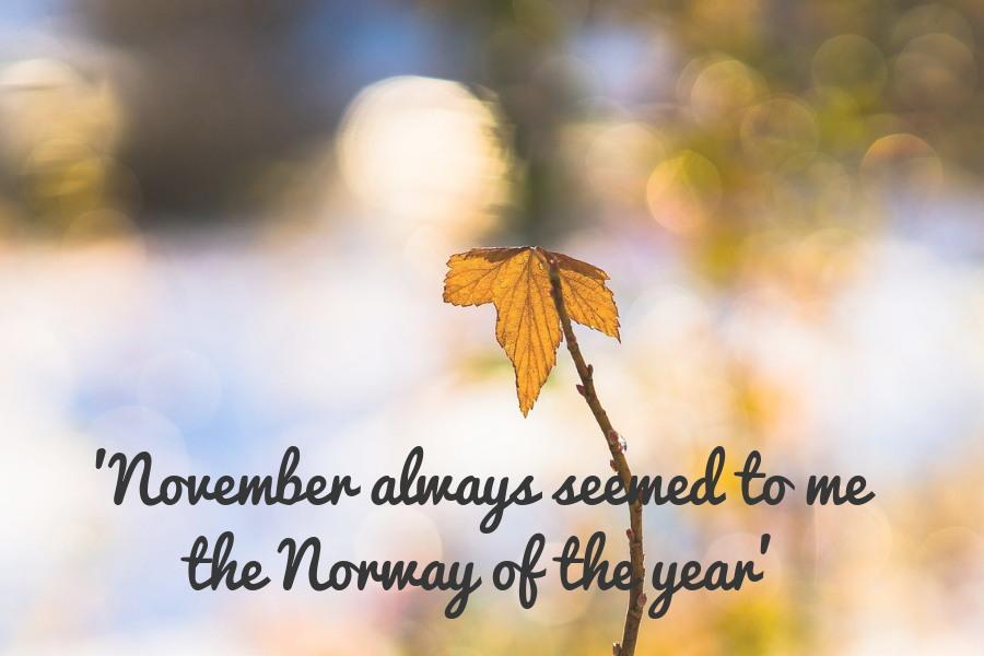 Maandoverzicht november 2018
