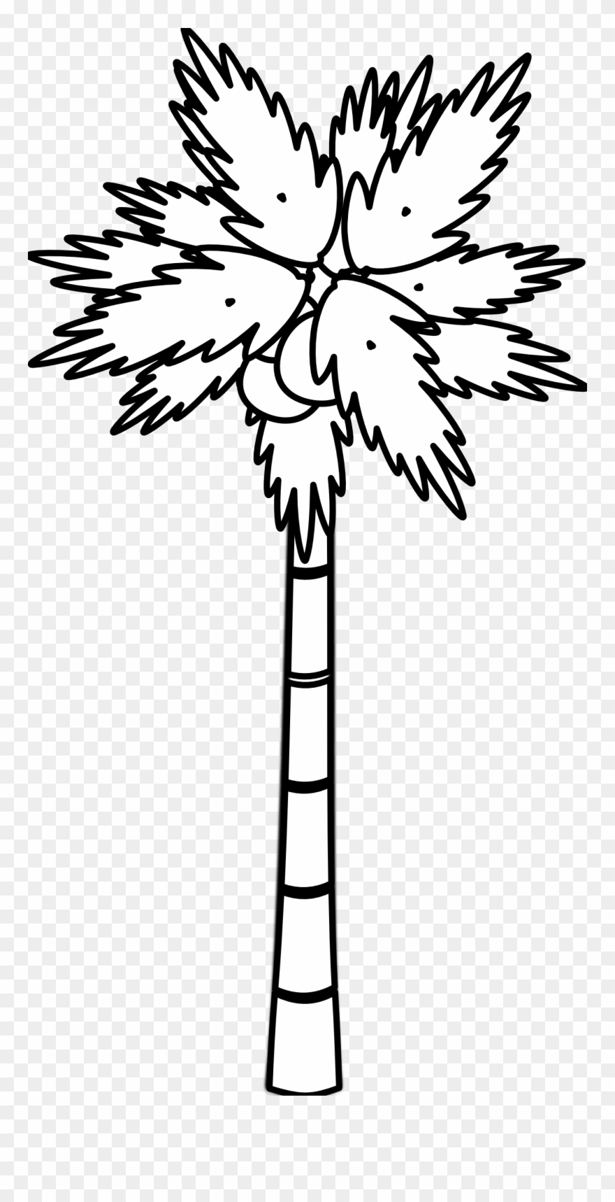 Images For Black And White Tree Drawings Images Coconut Tree Black And White Clipart Png Download 109 Pinclipart