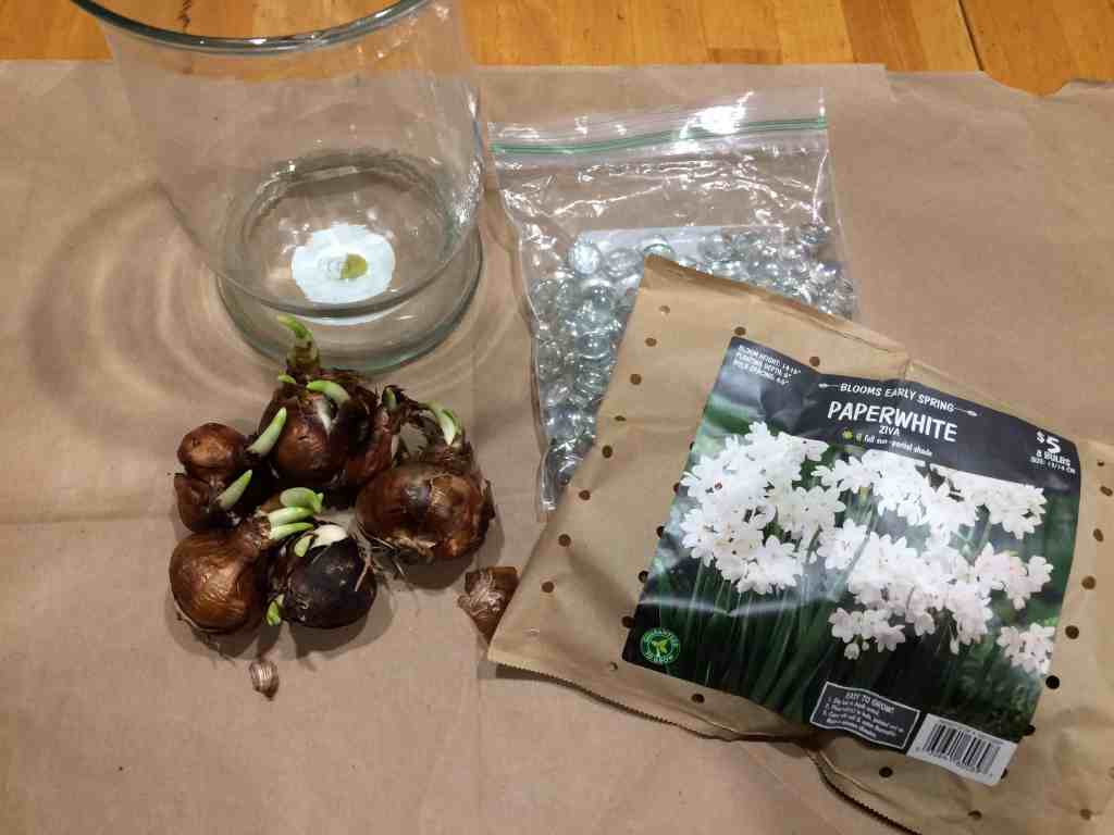 Supplies for planting indoor bulbs