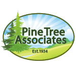 Pine Tree Associates club logo