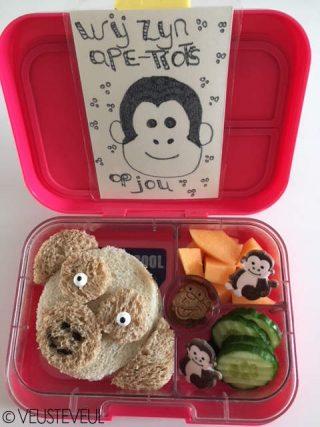 Lekkere gezonde brooddozen voor kinderen Bento Bentolunch simpele lunch Maureen