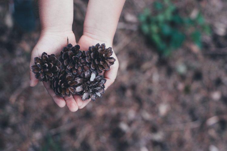 Kinderen in de natuur - 5 kinderactiviteiten om je kind warm te maken voor de natuur