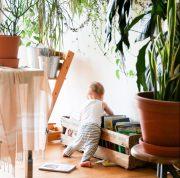 10 tips voor gezonde lucht in huis