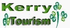 Business Website Design Ireland, website Brochure, websites design Logo created