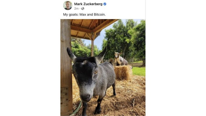zuckerberg bitcoin
