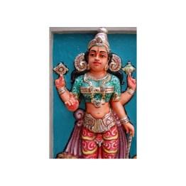 Goddess Manasa Devi Attunement