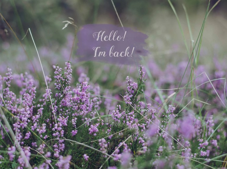 Koniec przerwy, wracam na bloga!