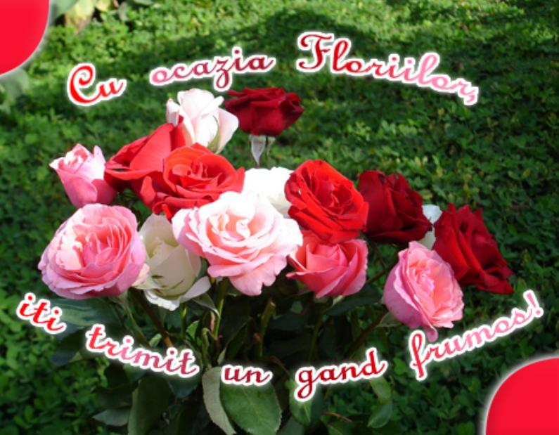 Mesaje Frumoase Pentru Iubit