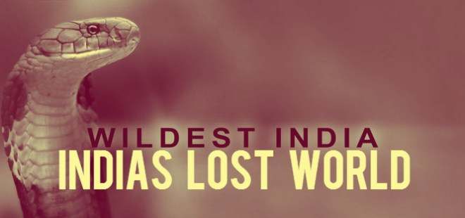 Wildest India Indias Lost World Cover Picture