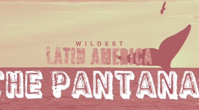 Wildest Latin America - The Pantanal Cover Picture