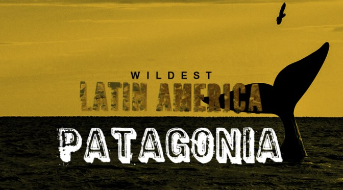 Wildest Latin America – <em> Patagonia! </em>