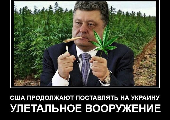 Ah, see… Putin memes are wrong…