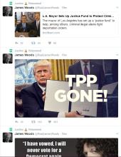 Screenshot of @monkey_dragon88 's obsessive retweeting of everything James Woods tweets.
