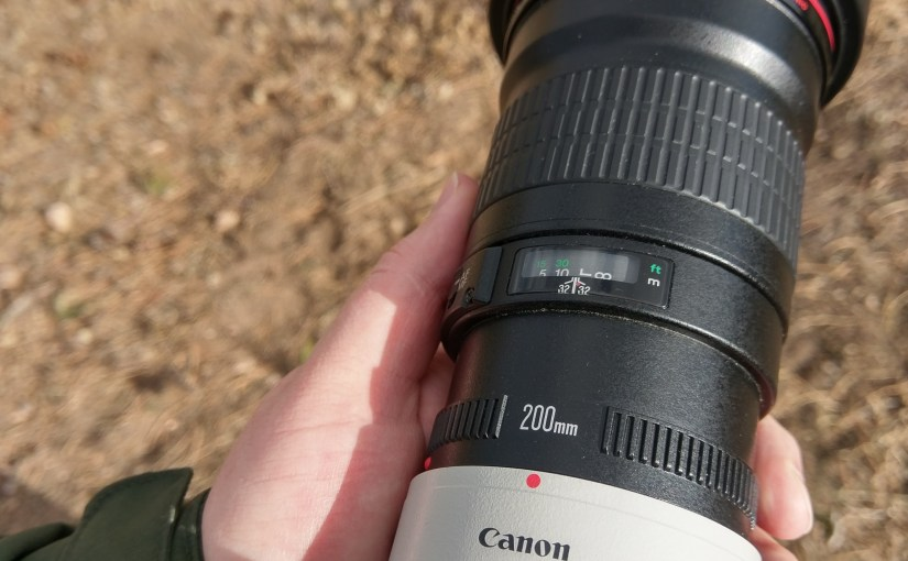 The Canon 200mm f/2.8 with 2x Extender