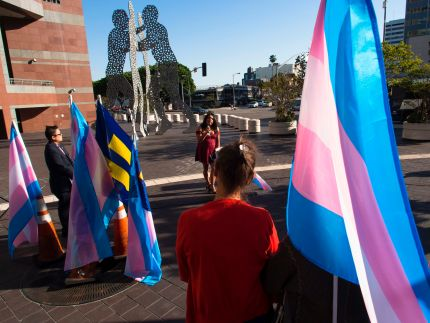 Members of the transgender community gather to celebrate International Transgender Day of Visibility, March 31, 2017 in Los Angeles, California.