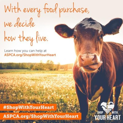 Make Heart Hands for Farm Animals!  #shopwithyourheart