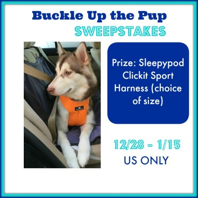Buckle Up the Pup Sweepstakes {US | Ends 01/15}