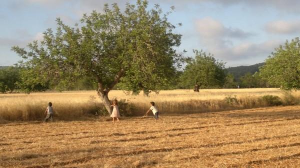 ibizacampo 600x337 - El Campo - Het platteland van Ibiza