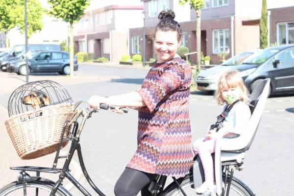 hamax fietsstoeltje